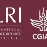 Several job and consultancy openings at ILRI