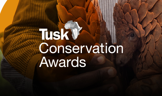 Tusk Awards 2021