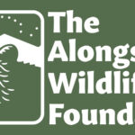 The Alongside Wildlife Foundation Seed-Grant Program